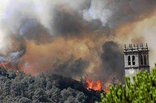 Repoblando los montes quemados #4